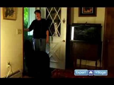 Nasıl-E Doğru Yürümek Senin Köpek: Ne Zaman Bir Kapıyı Adlı Bir Köpeğe Açıldığında Öğretmek