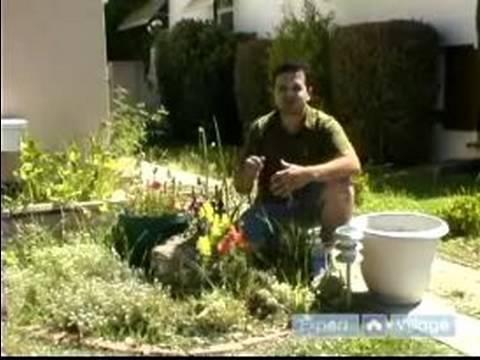 Çim Yönetmek & Bahçe : Bahçeyi Temizlemek İçin Nasıl