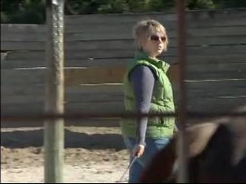 Atını Hamle İçin Nasıl Tren : Ücretsiz Ters Bir Tırıs Bir At Hamle Nasıl