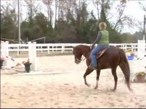 Canter Ve Lope Bir At Binmeyi: Nasıl Genişletilmiş Lope Attan Lope İçin Geçiş