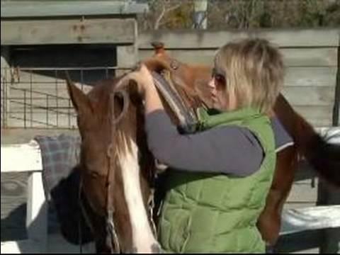 Nasıl Senin At İçinde Batı Tarzı Dizgin: Batı A At Başlığı Taç Parçası Konumlandırma
