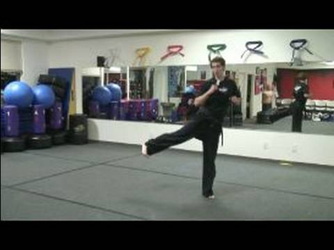 Grev Ve Tekmeler Yapmak Tae Kwon : Taekwondo Jump Yan Tekme