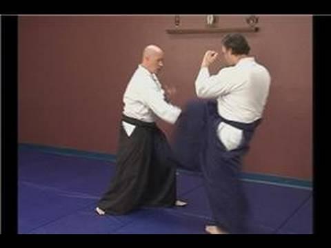 Tekme Savunması: Ara Aikido Teknikleri : Bir Tekme Savunan: Ara Aikido Teknikleri