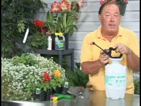 Bahçecilik Aletleri Ve Aksesuarları: Bahçe İçinde Bir Püskürtme Kullanarak