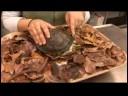 Sürüngenler, Amfibiler, Omurgasızlar Ve Küçük Evcil Hayvanlar : Asya Kutusu Kaplumbağa Gerçekler