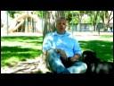 Buzdolabından Bir Bira Almak İçin Bir Köpek Eğitmek İçin Nasıl Köpek Eğitim İpuçları :