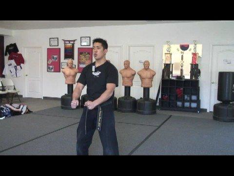 Aşırı Form Dövüş Sanatları : Aşırı Form Dövüş Sanatları Tanıtımı