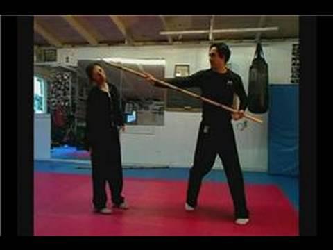 Dövüş Sanatı Bo Personel Teknikleri: Bo Teknikleri Çarpıcı Staff