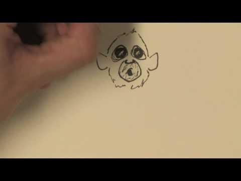 Örümcek Maymun Nasıl Çizmek İçin Çizim Ve İllüstrasyon :