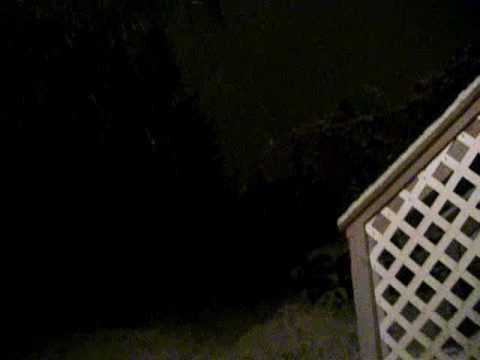 Seattle Kar 12 Aralık 2008