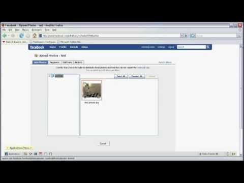 Facebook Üzerinde Fotoğraf Paylaşmak İçin Nasıl Internet Araçları Ve Kullanır :