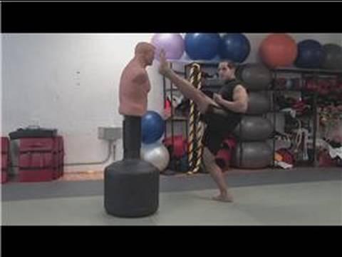 Dövüş Sanatları Teknikleri : Kick Boks Teknikleri