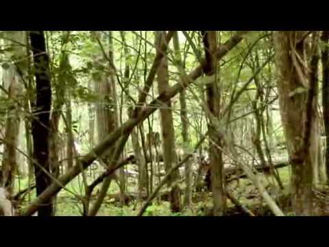 Wilderness - Bölüm 18 - Hiking Surviving