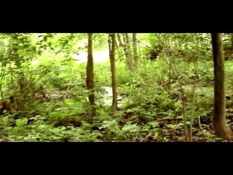Wilderness - Bölüm 20 - Finale Kalan