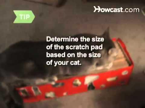 Nasıl Bir Kedi Tırmalamak Yastık Yapmak