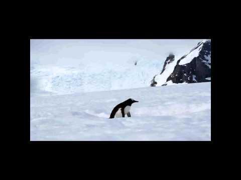 Antarktika Önizleme