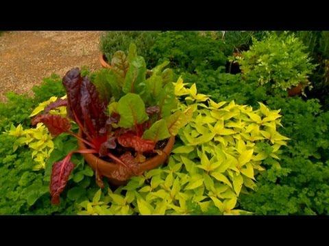 Yaz Bahçesinde Bahar Arasında Geçiş | S. Allen Smith Klasikleri