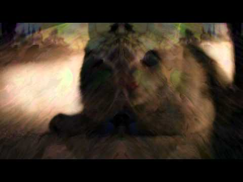 Sonnymoon - Hemen Önce Şafak (Resmi Müzik Video)
