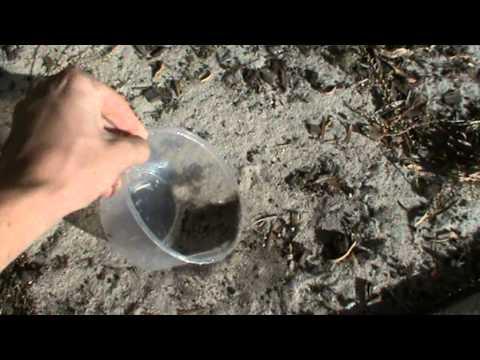 Nasıl Bir Plastik Konteyner Kum İle Doldurmak İçin
