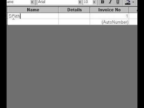 Microsoft Office Access 2000 Otomatik Sayı Veri Türleri