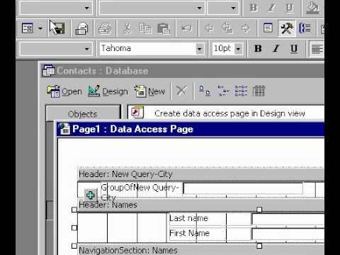 Veri Sayfasını Microsoft Office Access 2000 Oluşturun