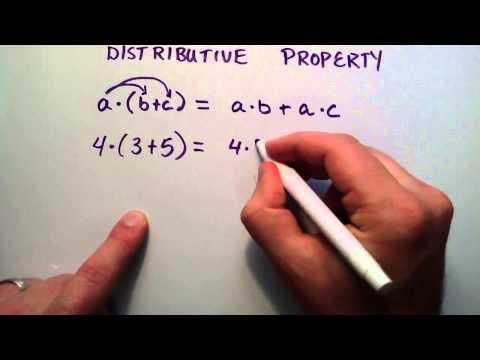 Cebirsel Özellikleri Bölüm 2 (Elektrik Dağıtım Özelliği), Ara Cebir, Ders 19