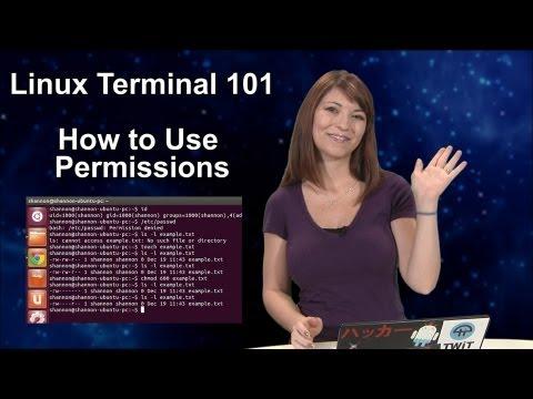 Haktip - Linux Terminal 101: İzinlerinin Nasıl Kullanılacağını