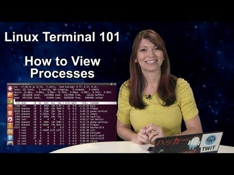 Haktip - Linux Terminal 101: Nasıl İşlemleri Görüntülemek İçin