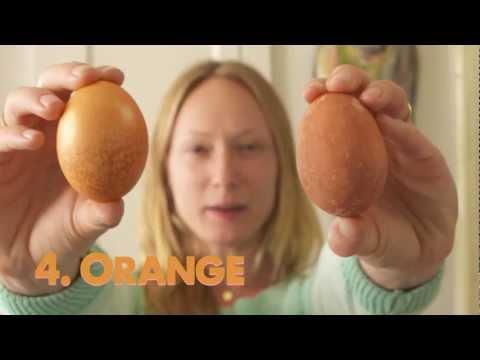 Hileler, Paskalya Geliştirmek İçin 7 Büyük Yumurta