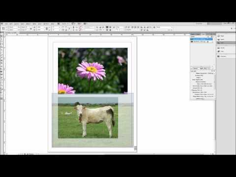Indesign Eğitimi: Görüntüleri - Hd İle Çalışma-