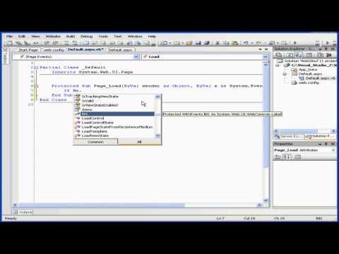 Visual Basic Eğitimi - Cilt 2-Ders 12: Görünüm Durumu