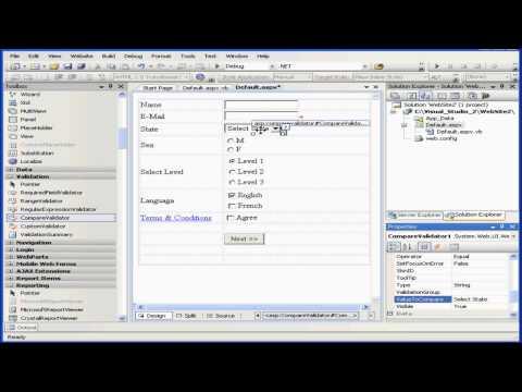 Visual Basic Eğitimi - Volume 2-Ders 04: Doğrulama Denetimleri