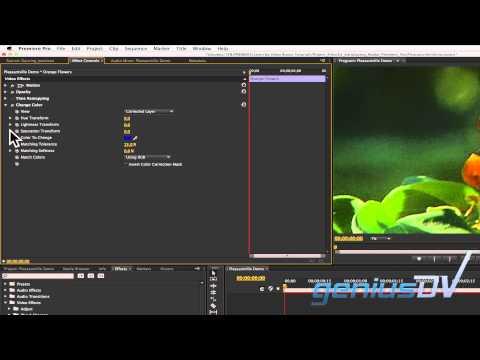 Adobe Premiere Pleasantville Etkisi