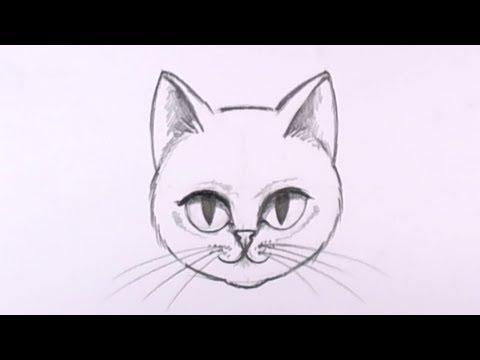Ders - Mat Karakalem - Bir Kedi Yüz Çizmek İçin Nasıl