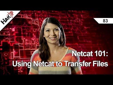 Netcat 101: Dosyaları, Haktip 83 Netcat Kullanma