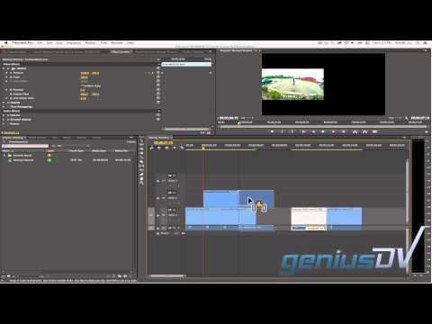 Adobe Premiere Tam Ekran Film Şeridi