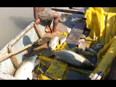 Aşırı Zalim Balıkçılık Yöntemleri