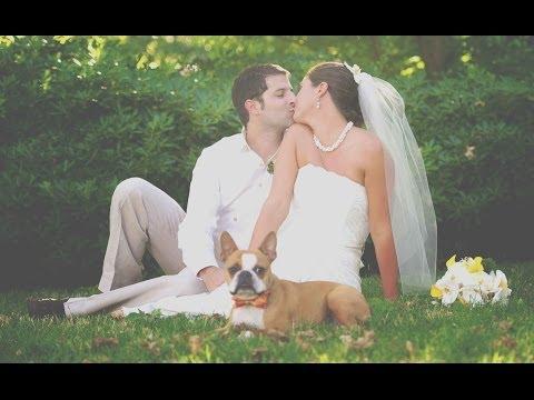 Photoshop - Düğün Fotoğraf Film Bak Fotoğraf Efekti