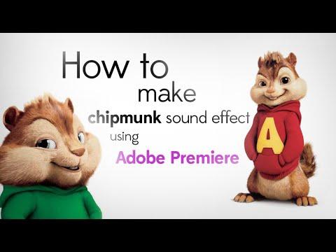 Nasıl Adobe Premiere [Hd] Kullanarak Sincap Ses Efekti Yapmak