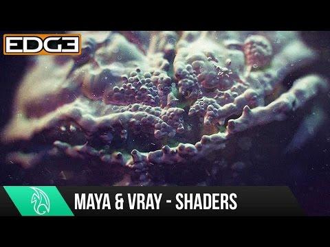 Maya Eğitimi - Mikroskobik Shader Vray Hd İle