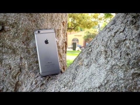 İphone 6 Ağacında.