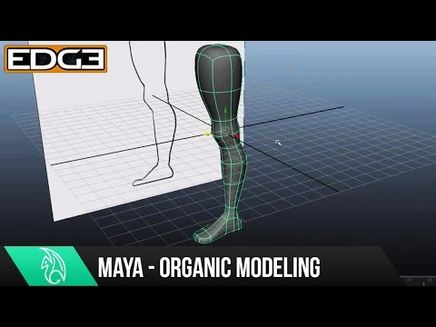 Maya Eğitimi - Bacak Hd Modelleme Organik