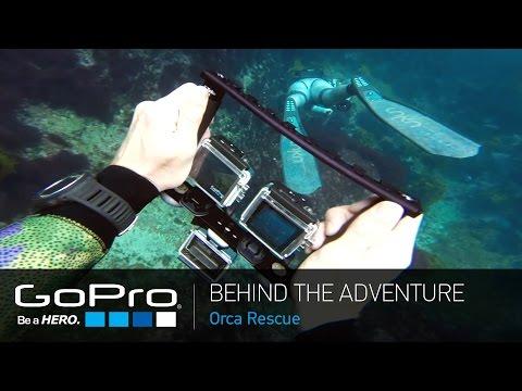 Gopro: Macera - Orca Kurtarma
