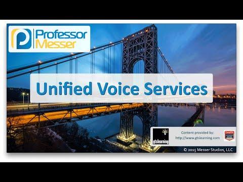 Birleşik Ses Hizmetleri - Sık Ağ + N10-006 - 1.2