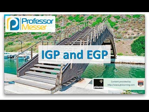 Igp Ve Egp - Sık Ağ + N10-006 - 1.9