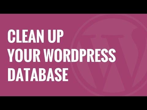 Nasıl Wordpress Veritabanı Performansı Artırmak İçin Temizlemek İçin