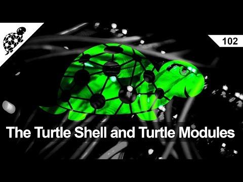Lan Kaplumbağa 102 - Kaplumbağa Kabuğu Ve Kaplumbağa Modülleri